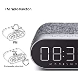 ILYO Portable Wireless Bluetooth Speaker FM Wireless Speaker Alarm Clock Function Music Player,Gray