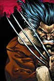 img - for Weapon X: Days Of Future Now TPB (Wolverine) book / textbook / text book
