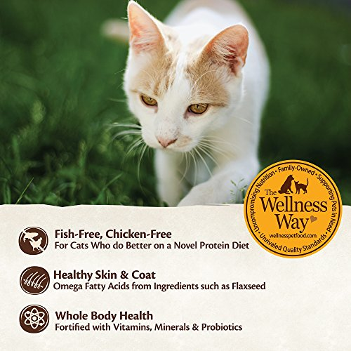 Wellness Core Grain Free Dry Cat Food