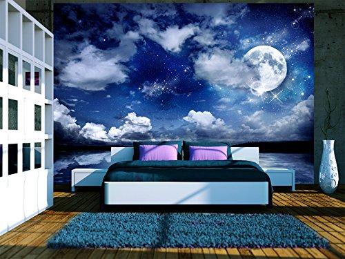 Fototapete selbstklebend Nachthimmel 343x256 cm decor Tapeten Wandtapete klebend Klebefolie Dekofolie Tapetenfolie Landschaft Mond blau 10110903-27 murando