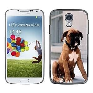 [Neutron-Star] Snap-on Series Teléfono Carcasa Funda Case Caso para Samsung Galaxy S4 [Boxer Dog Breed piel de Brown Cachorro]