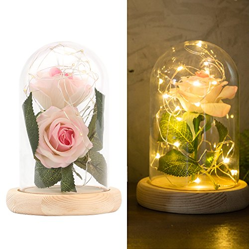 - Enchanted Rose Lamp, Beauty and The Beast Rose in Glass Dome, 20 Led Light 2pcs Pink Silk Rose Flower on a Wood Base, Romantic Forever Gift for Birthday Party Wedding Anniversary Valentine's Day Decor