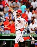 "Bryce Harper Washington Nationals 2014 MLB Action Photo (Size: 8"" x 10"")"