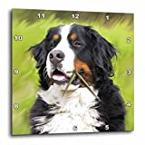 3dRose Bernese Mountain Dog Wall Clock, 10 by 10-Inch For Sale