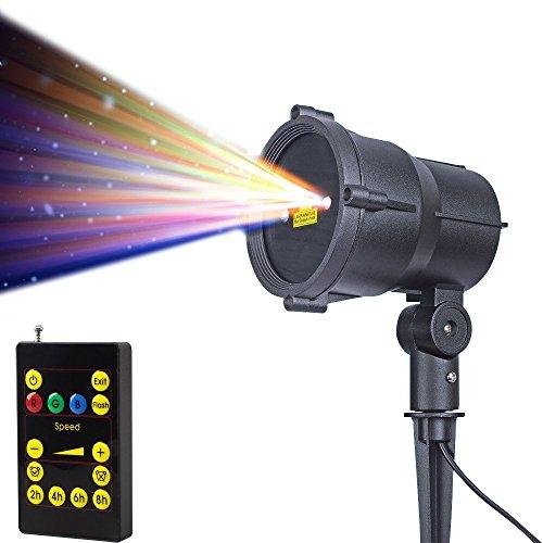 Outdoor Landscape Laser Lighting in Florida - 1