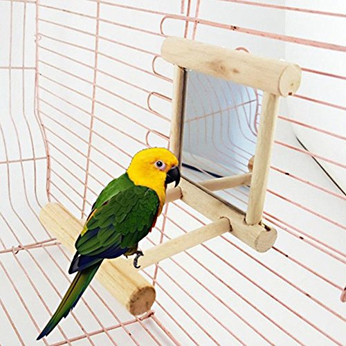 Amrka Pet Bird Mirror, Bird Perches for Parrots Stand Wooden Play Toys For Parrot Budgies Parakeet Cockatiel Conure Finch Lovebird
