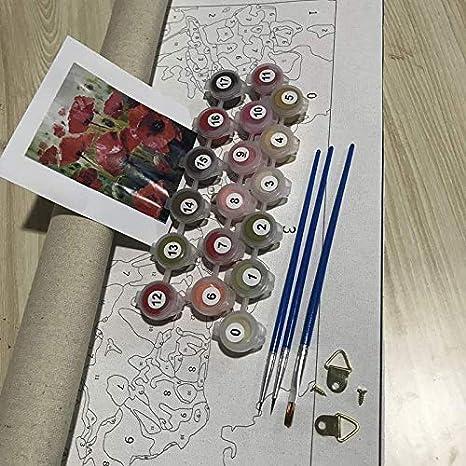 Mileelife Pintar por números para niños Adultos Kit de Pintura al óleo DIY Principiante - Loto Blanco Buda 1681: Amazon.es: Hogar