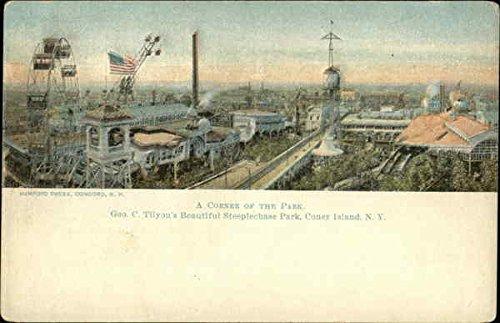 A Corner Of The Park  Geo  C  Tilyous Beautiful Steeplechase Park Original Vintage Postcard