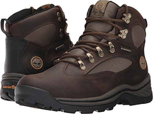 Gore Timberland Tex Boots (Timberland Men's Chocorua Trail Boot Gore-Tex Brown/Green Size 11.5)