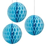 "Floral Reef Set of 3 - 12"" SKY BLUE Tissue Paper Honeycomb Ball Pom Pom Flower Hanging Home Decoration Party Wedding"