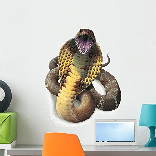King Cobra Snake Wall Decal by Wallmonkeys Peel and Stick Graphic (24 in H x 20 in W) - Wall Decals Snake