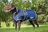 Weatherbeeta Windbreaker 420D Deluxe Dog Coat Black/Boysenberry 32″ For Sale