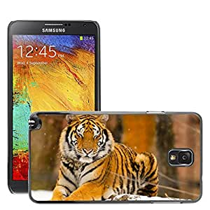 Hot Style Cell Phone PC Hard Case Cover // M00047352 animals wild animal siberian tiger // Samsung Galaxy NOTE 3