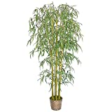 Laura Ashley Realistic Bamboo Tree, Over 1900 leaves