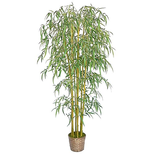 Laura Ashley Realistic Bamboo Tree, Over 1900 leaves by Generic