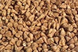 SeedRanch Sugar Beet Seed - 50 Lbs.
