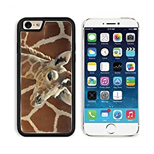 Giraffe Small Calf Face Pattern Cute Baby Africa Wildlife Animal Apple iPhone 6 TPU Snap Cover Premium Aluminium Design Back Plate Case Customized Made to Order Support Ready Luxlady iPhone_6 Professional Case Touch Accessories Graphic Covers Designed Model Sleeve HD Template Wallpaper Photo Jacket Wifi Luxury Protector Wireless Cellphone Cell Phone
