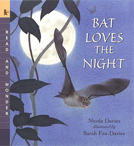 (Bat Loves the Night: Read and)