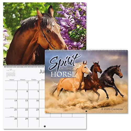 2020 Spirit of The Horse Wall Calendar- 12