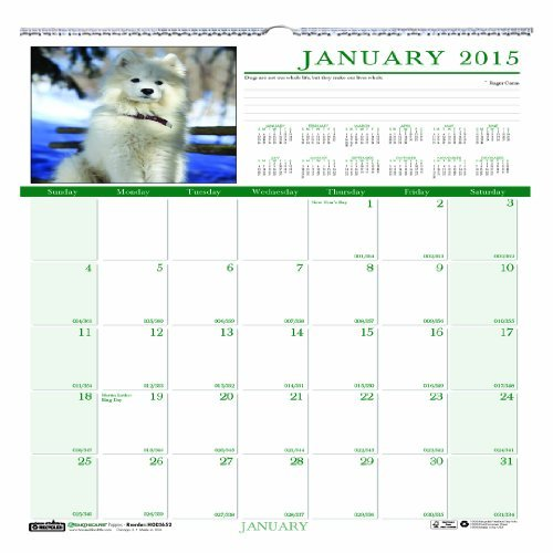 Earthscapes Puppies Wall Calendar - House of Doolittle Earthscapes Puppy Wall Calendar 12 Months, January 2015 to December 2015, 12 x 12 Inches, Full Color Photo, Recycled (HOD3651-15) by House of Doolittle