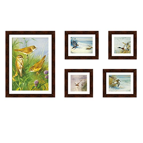 GAOYANG 5 Picture Combination Painting Decorative Picture Frame Combination Photo Wall Living Room Study Bedroom Sofa Wall New Products ( Color : Coffee - Birds ) by GAOYANGzhaopianqiang
