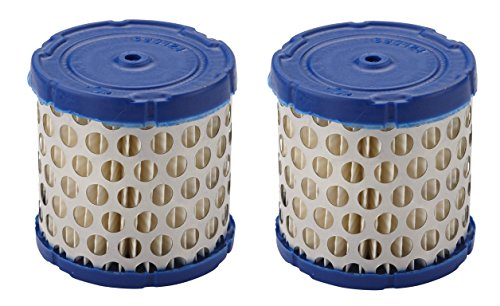 (Briggs & Stratton Genuine OEM 396424S Round Air Filter Cartridge (2)