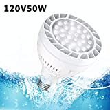 E-cowlboy 120V 50W 6500K Daylight White Light Swimming Pool LED Light Bulb with E26 Screw Base (120V 50W)