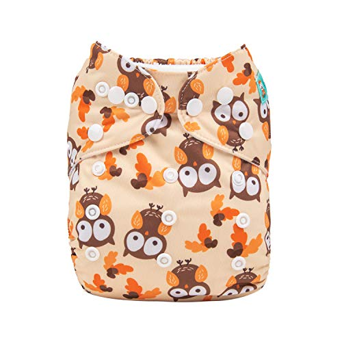 ALVABABY Baby Diapers Reuseable Washable Pocket Cloth Diaper Nappy + 2 Inserts (YX27,Loveable owl)
