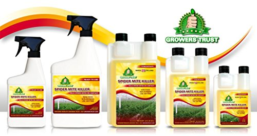 Spray Spider Mites (Growers Trust Spider Mite Killer Non-toxic, Biodegradable - Natural Pesticide - (16oz Ready to use Foliar Spray))