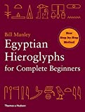 img - for Egyptian Hieroglyphs for Complete Beginners book / textbook / text book