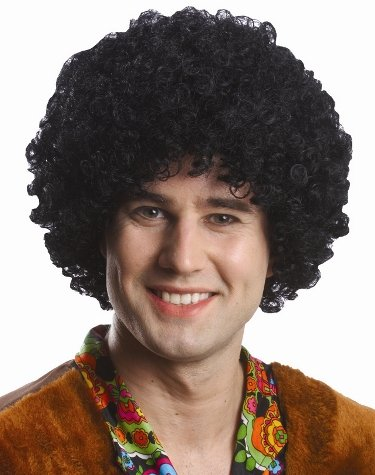 Dazed And Confused Costumes (Black Afro Wig Black)