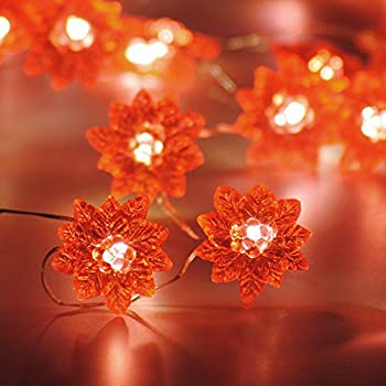 Amazon.com: Kurt Adler 35-Light Red Poinsettia Light Set: Home ...