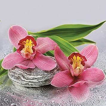 5 Stück Servietten Orchideen ROSA Steine orchids Serviettentechnik Blumen napkin