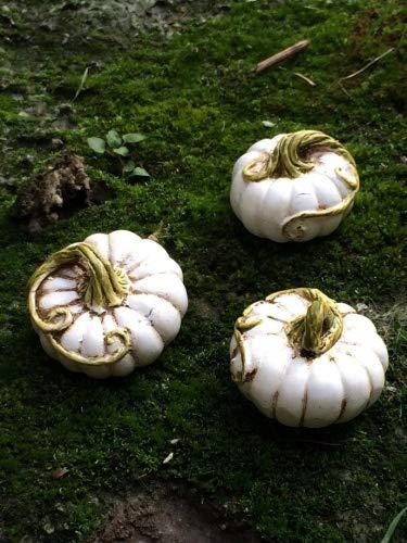 Fiddlehead Fairy Garden Miniature Halloween Pumpkin Accessory Set (Set of 3) #17004