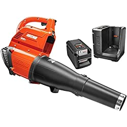 ECHO ZRCBL-58V2A 120 mph 58-Volt Li-Ion Blower Kit Certified Refurbished