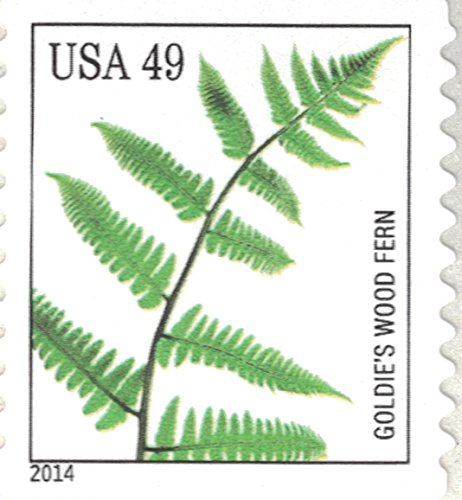 Strips of 10 Ferns USPS Forever Postage Stamps featuring a close up photograph of five different species of fern (10 Strips of 10 Stamps) Photo #2
