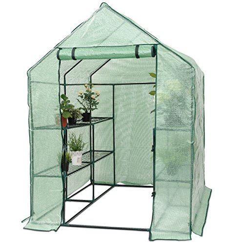 Superbuy Portable Greenhouse 8 Shelves Mini Walk In Outdoor Green House 2 Tier for Garden Patio Backyard by Super buy