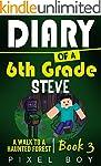 Minecraft Diary: Diary of a 6th Grade...