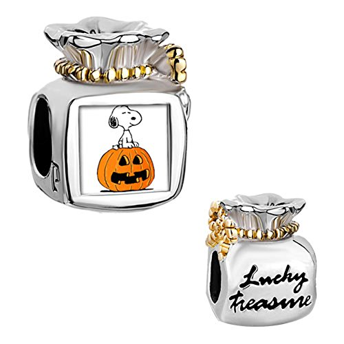 Mel Crouch Halloween Pumpkin Charms Dog Photo Charms Butterfly or Mom or Wish or Heart Dangle Beads (bag)