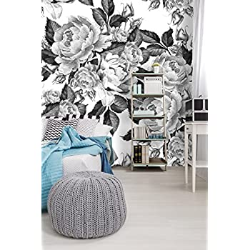 Amazon Removable Wallpaper Mural Peel Stick Peonies Flowers