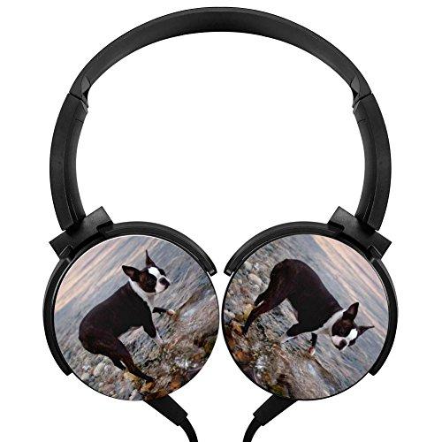 PjNnt Boston Terrier Bass Stereo Wired Headphones Portable Folding Over-ear Headset Black