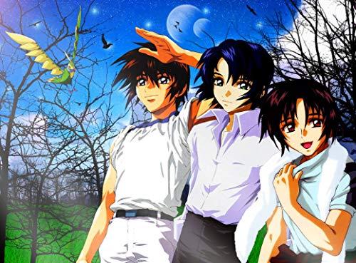 (Kidou Senshi Gundam Seed Destiny 33inch x 24inch Plastic Poster - Waterproof - Anti-Fade - Outdoor/Garden/Bathroom - )
