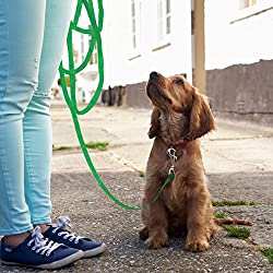 Tyhbelle Pet Dog Training Leash Lead Puppy Tracking Walking Strap (50 Feet, Green)