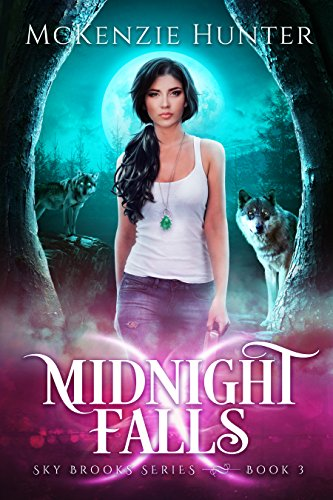 Midnight Falls (Sky Brooks Series Book 3) ()