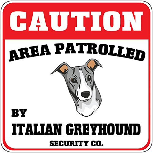 caution-area-patrolled-italian-greyhound-dog-security-crossing-metal-sign