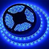 MEILI LED Light Strip SMD 3528 16.4 Ft 5 Meter Waterproof 300 LEDs 12V Flexible Rope Light (No Power Supply), Blue