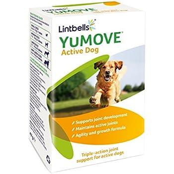 Yumove Dog Best Price