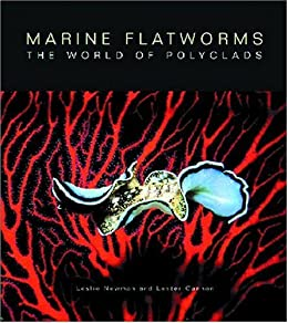 Marine Flatworms: The World of Polyclads by [Newman, Leslie, Cannon, Lester]