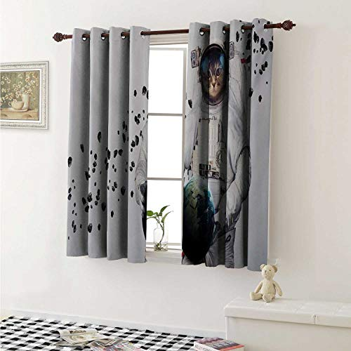 Flyerer Space Cat Customized Curtains Astronaut Kitten in Space Suit Holding World with Galaxy Clusters Image Curtains for Kitchen Windows W63 x L45 Inch White Black and Blue ()