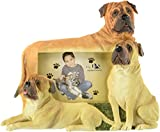 Bullmastiff Picture Frame Holds Your Favorite 4 by 6 Inch Photo, Hand Painted Realistic Looking Bull Mastiff Family  Holding Your Photo Beautifully Crafted Frame, Unique and Special Bull Mastiff Gifts for Bull Mastiff Owners And Lovers